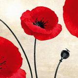 Poppy Dawn Giclee Print by James Worthington
