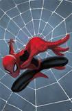 Spider-Man - Minimalist Poster