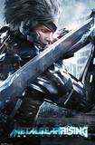 Metal Gear Rising - Blade Prints