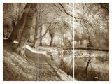 Secret Pool Giclee Print by Bill Philip