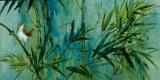 Bambu IV Giclee Print by  Mei