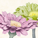 Gerbera Glory II Giclee Print by Linda Wood