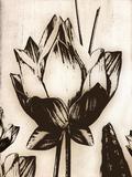 Memoire Giclee Print by Malcolm Sanders