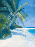 Tropical Beach II Giclee Print by Paul Brown