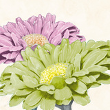 Gerbera Glory I Giclee Print by Linda Wood