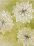 Dahlia Dream I Giclee Print by Emma Forrester