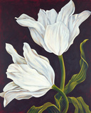 Twilight Tulip Giclee Print by Leigh Banks