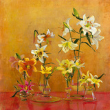 Lilies In Vases I Giclee Print by Danson 