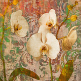 Orchids Crackle Giclee Print by Tania Bello
