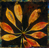 Botany Trip VII Giclee Print by  Douglas