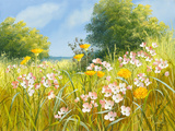 Cuckoo Flowers Giclee Print by Mary Dipnall