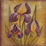 Ancient Floral I Giclee Print by  Dysart