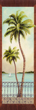 Colonial Palm II Giclee Print by Don Tyler