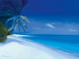 Tropical Beach I Giclee Print by Paul Brown