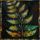 Botany Trip VI Giclee Print by  Douglas