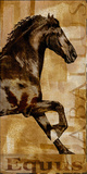 Caballus II Giclee Print by Mark Chandon