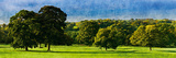 English Meadow Gicléedruk van Pete Kelly