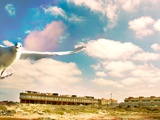 Seagull at the Beach Resort Photographic Print by Mia Friedrich