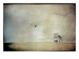 Soaring Photographic Print by Mia Friedrich