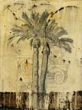 Arid II Giclee Print by  Carney