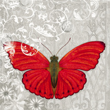 Red Butterfly I Poster by Alan Hopfensperger