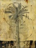 Arid I Giclee Print by  Carney