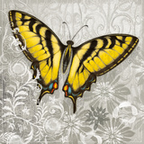 Yellow Butterfly III Art by Alan Hopfensperger