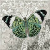 Green Butterfly I Posters by Alan Hopfensperger