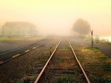 Fog on the Tracks Photographic Print by Jody Miller