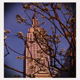 Empire State Building in the Spring, Manhattan, New York City Photographic Print by Sabine Jacobs