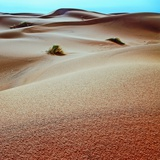 Desert Sands Photographic Print by Steven Boone