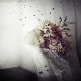 Aphonia and the Bees Photographic Print by Marta Orlowska
