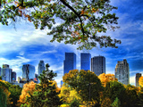 Central Park, Manhattan, New York City Photographic Print by Sabine Jacobs
