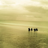 A Calm Sea with Four People Riding Horses Photographic Print by Mark James Gaylard