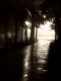 Sun Shining Through Trees onto a Dark Avenue Photographic Print by Rob Lambert