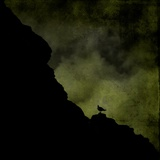 Silhouette of a Bird on a Cliff Photographic Print by Eudald Castells