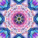 Blossom Mandala No 34 Photographic Print by Alaya Gadeh