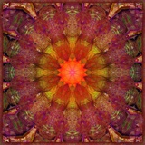 Autumn Mandala No 45 Photographic Print by Alaya Gadeh