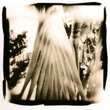 Evening Gown Image, Ball Gown Photographic Print by Susan de Witt