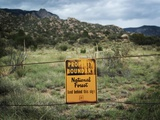 Sandia Mountain National Forest Boundary Landscape, New Mexico Photographic Print by Kevin Lange
