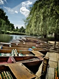 Punting Days Photographic Print by Tim Kahane