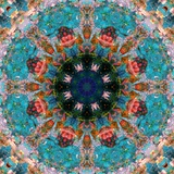 Mandala Royal Tree No 5 Photographic Print by Alaya Gadeh