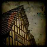 An Old House with a Broken Roof and Flying Birds Photographic Print by Eudald Castells