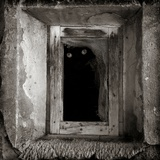 A Black Cat Inside a Window Photographic Print by Luis Beltran