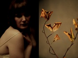 A Young Woman with Bare Shoulders Looking Towards a Withered Plant Photographic Print by India Hobson