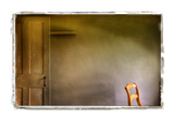 Door and Chair Photographic Print by Craig Satterlee
