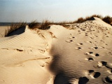Sand Dunes and Foot Prints Photographic Print by Katrin Adam