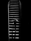 A Child Climbing Stairs Photographic Print by Rip Smith