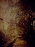 The Path Photographic Print by Anna Mutwil
