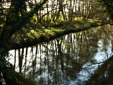 The River at Hoxne Photographic Print by Tim Kahane